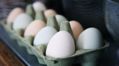 dozen eggs in a carton